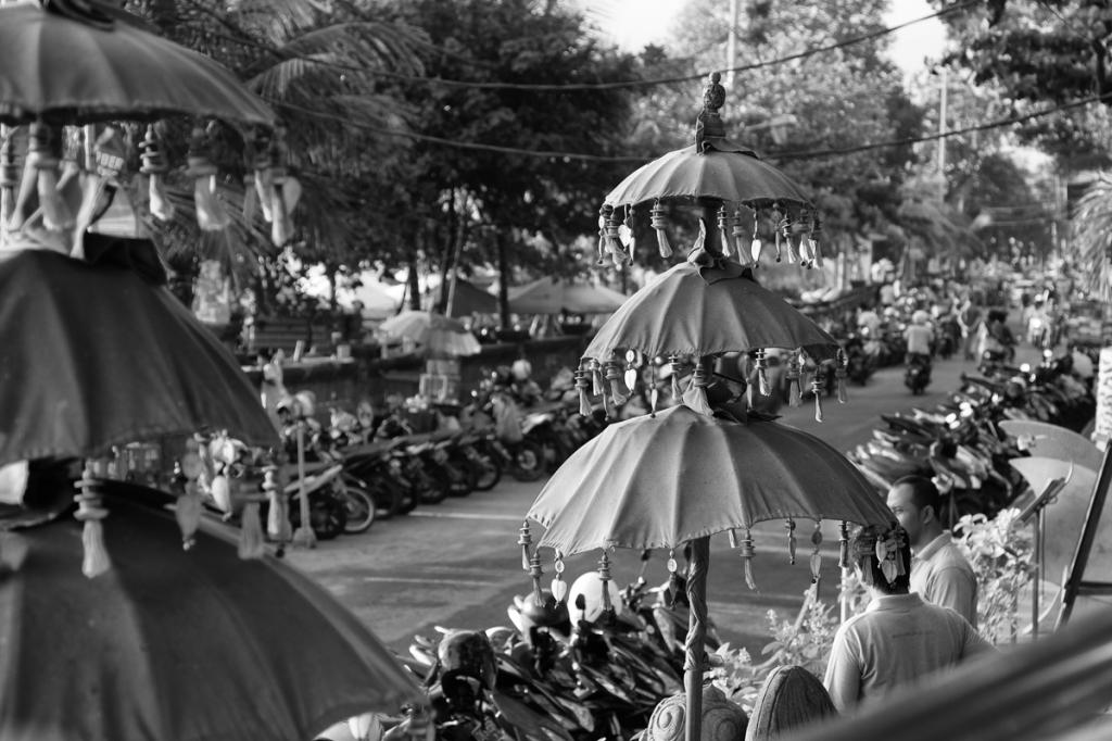 151114 - Bali_Schooters-3